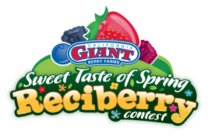 Sweet Taste of Spring Reciberry Contest