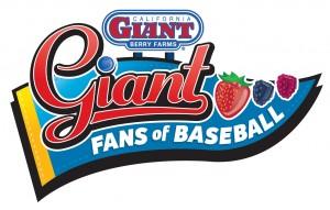 Berries + Baseball