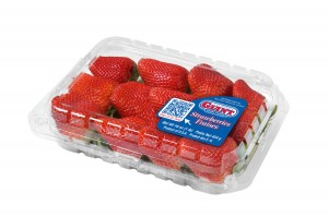 Every Single Strawberry was Perfect!