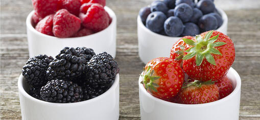 generic-mixed-berry-banner