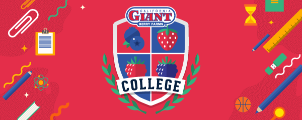 CG-College_emailHeader-1