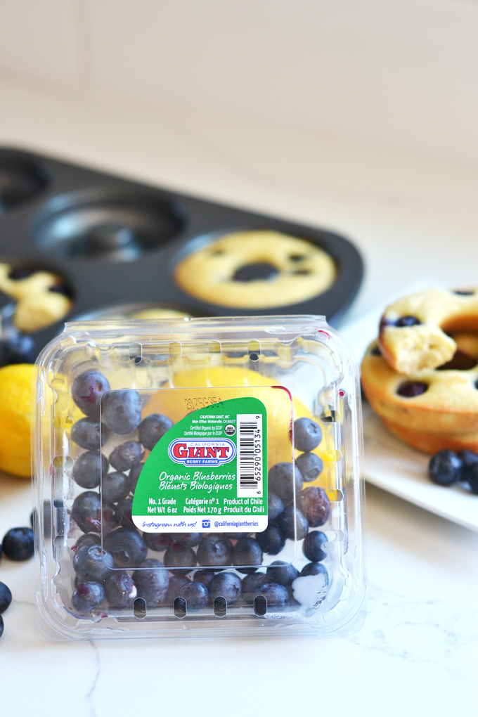 paleo-blueberry-lemon-donuts-2