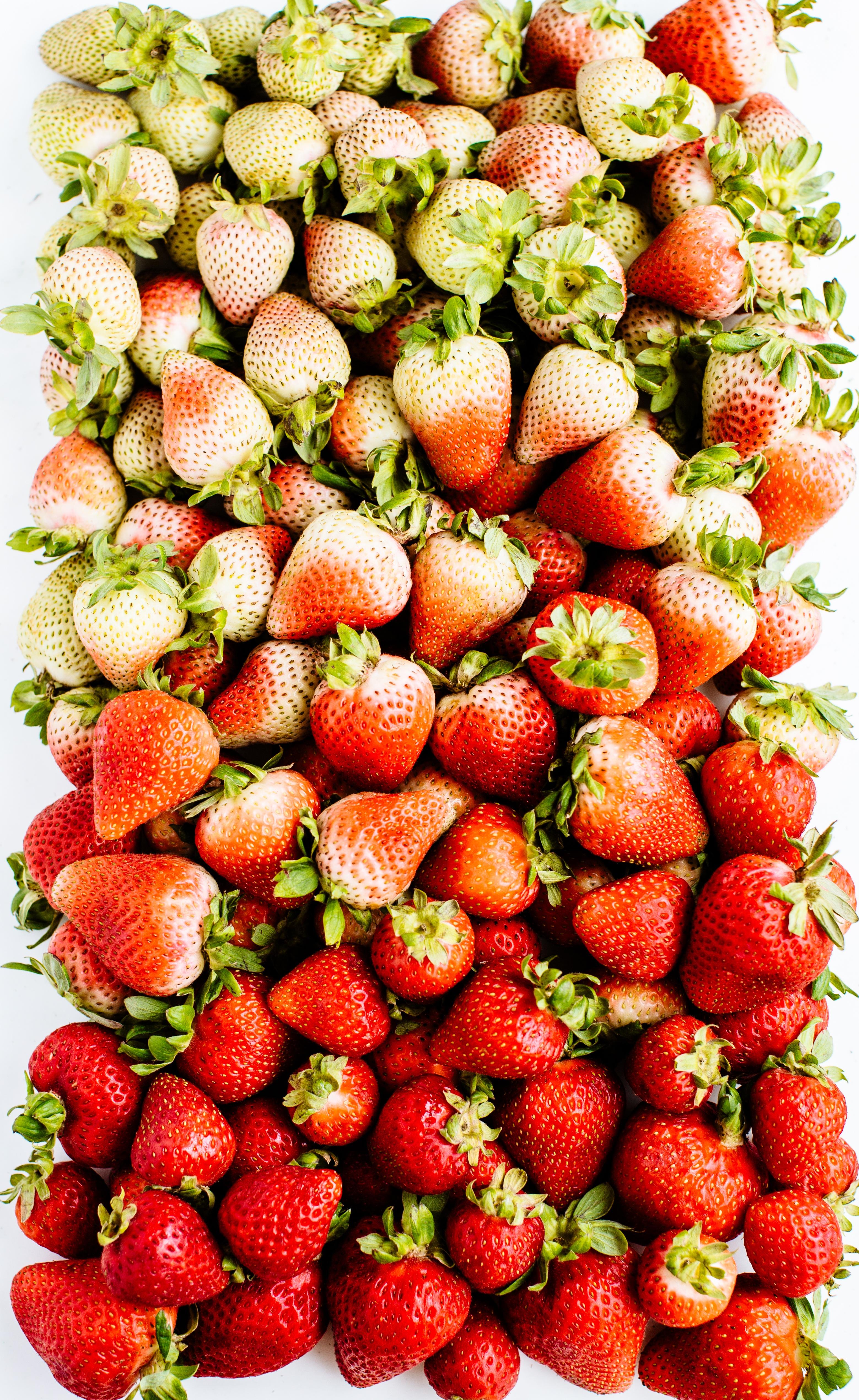 strawberry gradient-1.jpg