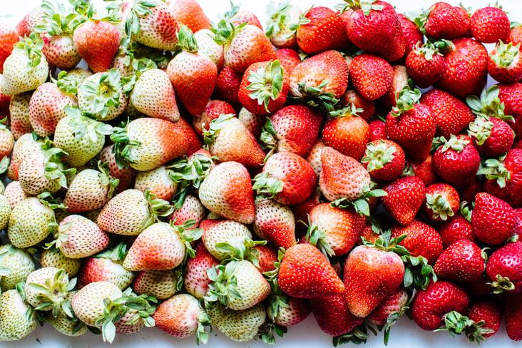 strawberry gradient-3.jpg