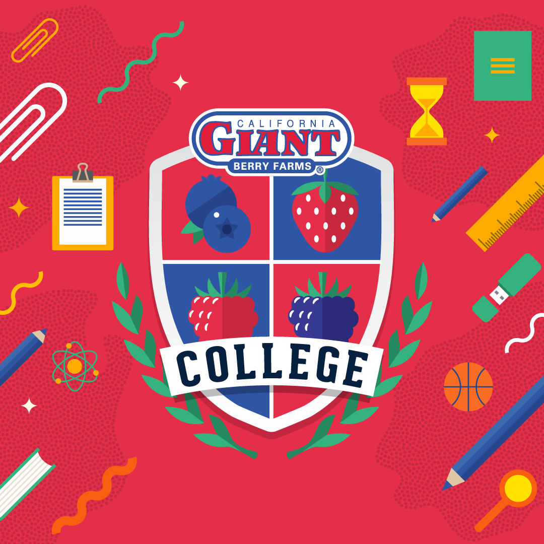 Cal Giant College: Recipes That Will Get You Ready for the Fall Semester